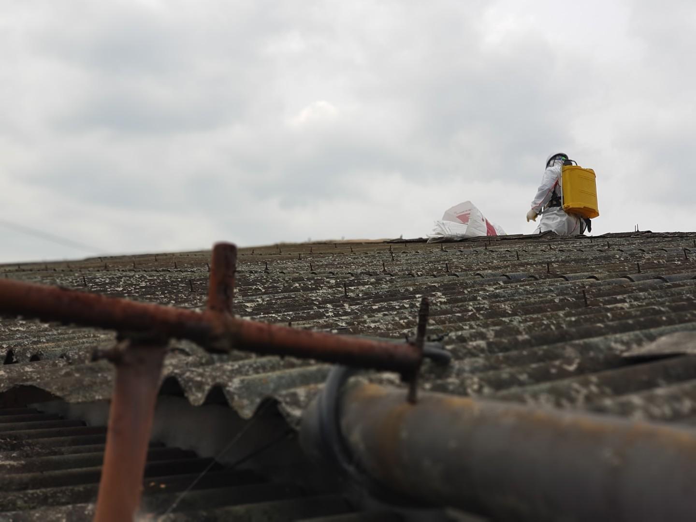 11 번째 사진  에  연면적243 ㎡ 경남 창녕군 대지면 슬레이트 지붕 석면처리 현장