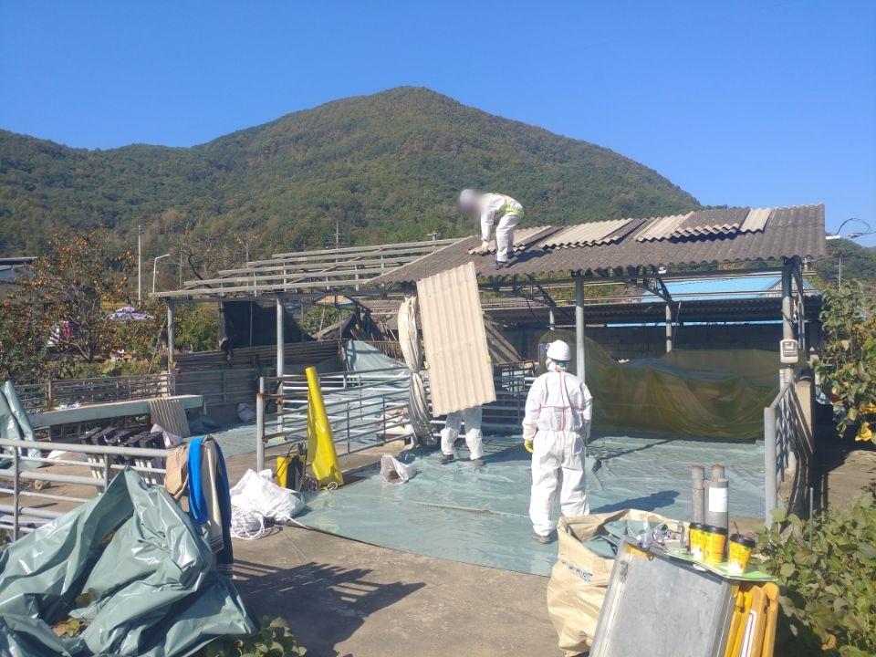 11 번째 사진  에  연면적44 ㎡ 경상남도 밀양시 청도면 축사 슬레이트지붕 석면처리