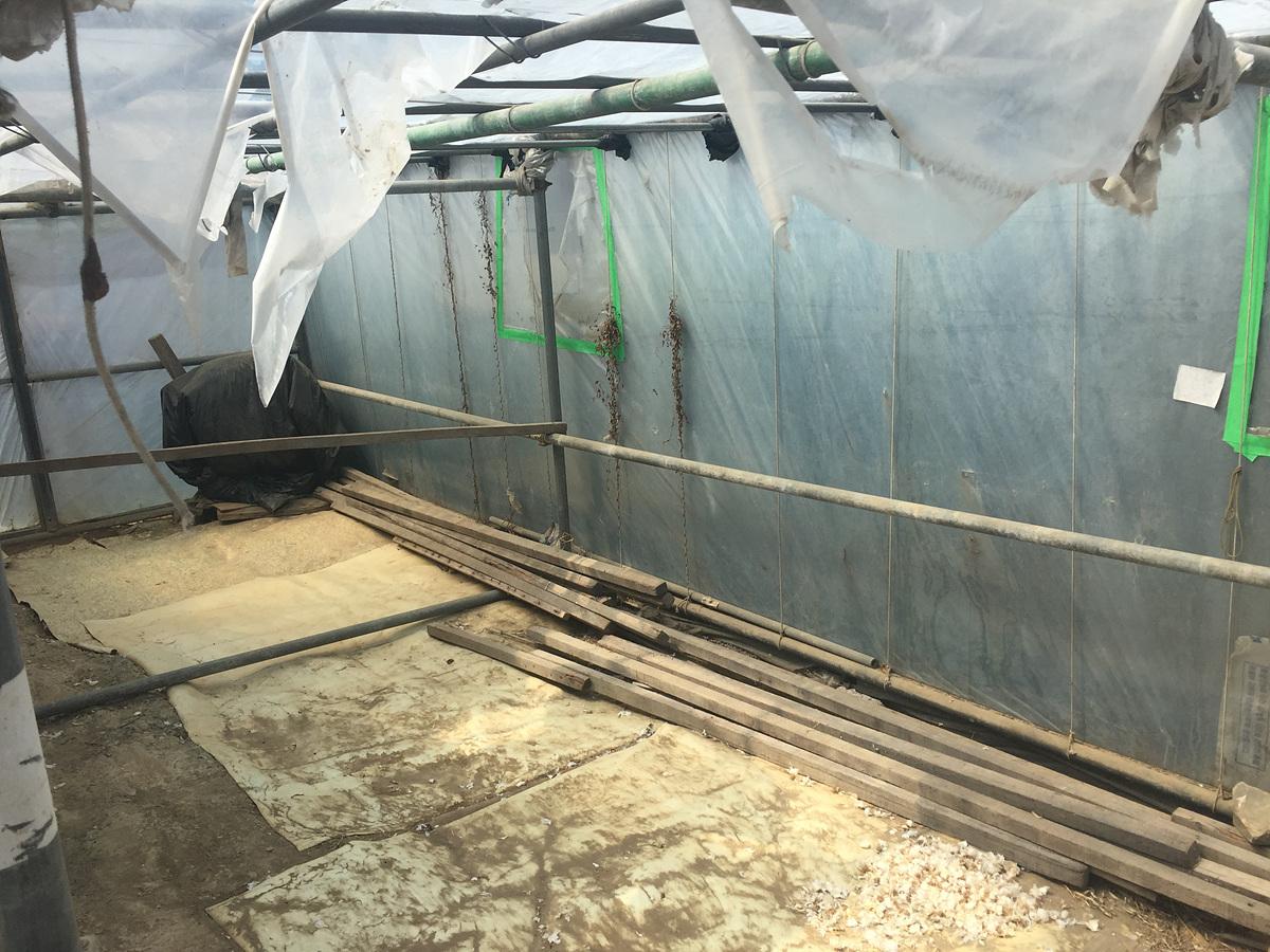 6 번째 사진 창고시설 에  연면적146.22 ㎡ 부산 기장군 일광면 주택 철거 전 석면조사