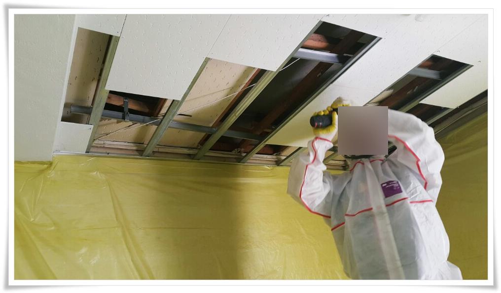 8 번째 사진  에  연면적 ㎡ 울진 현대자동차 대리점 천장 석면 텍스 철거 현장