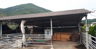 경상남도 밀양시 청도면 축사 슬레이트지붕 석면처리